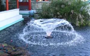 Современный материал для создания декоративного водоёма